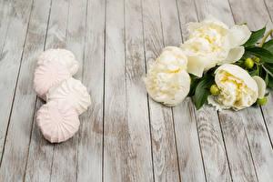 Bilder Pfingstrosen Süßigkeiten Zefir Bretter Blumen
