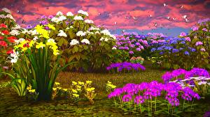 Fotos Flammenblumen Narzissen Schmetterlinge 3D-Grafik