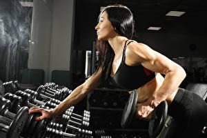 Hintergrundbilder Fitness Brünette Hantel Sport Mädchens