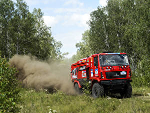 Wallpapers Trucks Forests Red  Cars