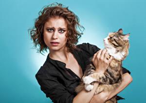 Fonds d'écran Chat domestique Aux cheveux bruns Voir Filles Animaux