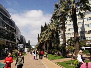 Pictures Houses People Russia Street Palm trees Sochi Cities