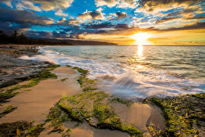 Image Tropics USA Sunrises and sunsets Coast Waves Ocean Hawaii Moss Clouds Sun Nature