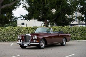 Bilder Bentley Antik Bordeauxrot Cabrio Metallisch 1962-66 S3 Continental Convertible by Mulliner Park Ward automobil