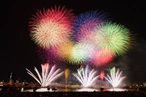 Photo Fireworks Tokyo Japan Night Cities