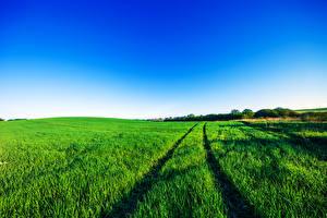 Fotos Felder Himmel Ähre Natur