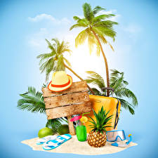 Photo Tropics Pineapples Fruit Palms Hat Suitcase Tourism 3D Graphics Nature
