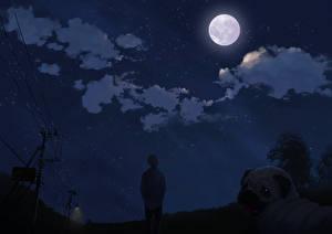 Fotos Himmel Nacht Mond Mops (Hunderasse) Fantasy