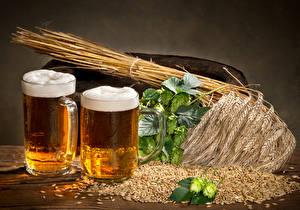 Fotos Getränke Bier Weizen Becher Zwei Ähre Getreide Schaum Lebensmittel