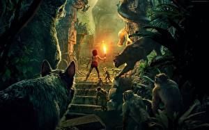 Fotos Schwarzer Panther Affen The Jungle Book 2016 Junge Fackel Film