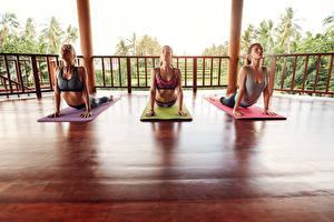 Hintergrundbilder Drei 3 Hand Yoga Mädchens Sport