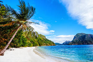 Pictures Philippines Coast Landscape photography Mountains Sea Palms Nature
