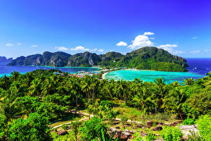 Picture Thailand Parks Mountains Sea Scenery Palm trees Krabi Nature