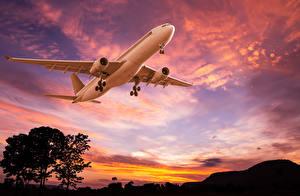 Hintergrundbilder Flugzeuge Verkehrsflugzeug Himmel Morgendämmerung und Sonnenuntergang Luftfahrt