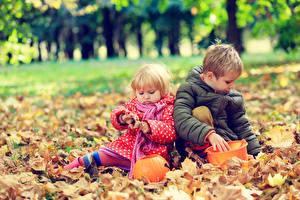 Wallpapers Autumn 2 Boys Little girls Jacket Foliage Children