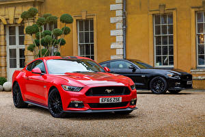 Image Ford Two Metallic 2015-16 Mustang GT Fastback automobile