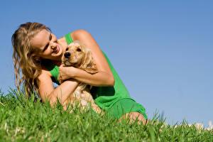 Image Dogs Blonde girl Smile Grass Girls