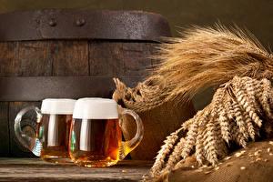 Bilder Getränke Bier Becher Zwei Ähre Lebensmittel
