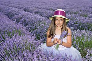 Bilder Acker Lavendel Kleine Mädchen Der Hut Süßes Kinder