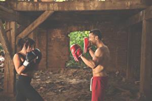 Fonds d'écran Homme Boxe anglaise Aux cheveux bruns 2 jeunes femmes Sport