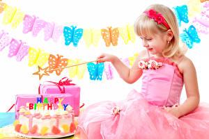Photo Birthday Cakes Butterflies Little girls Gown child