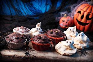 Image Halloween Baking Pumpkin Cupcake Spiders Food