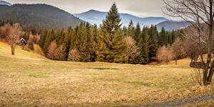 Images Czech Republic Autumn Mountains Forests Grasslands Nature