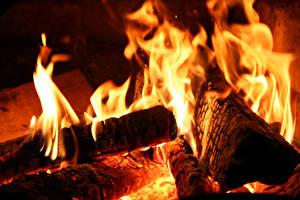 Wallpaper Flame Closeup Macro photography Bonfire