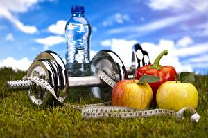 Fotos Fitness Äpfel Hantel Gras