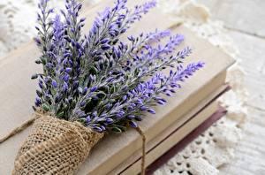 Fotos Lavendel Sträuße Bücher