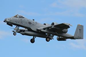Fotos A-10 Thunderbolt II Flugzeuge Erdkampfflugzeug