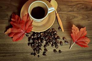 Bilder Kaffee Tasse Getreide Untertasse Blattwerk Lebensmittel