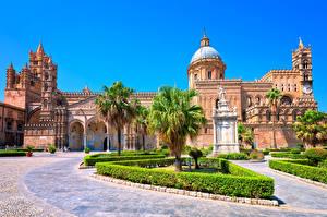 Sfondi desktop Italia Tempio Sicilia Cattedrale Palme Arbusti Cathedral of PalermoCathedral of Palermo