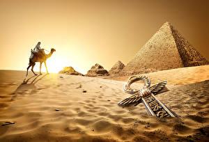 Fotos Ägypten Wüste Altweltkamele Sonnenaufgänge und Sonnenuntergänge Sand Cairo Natur