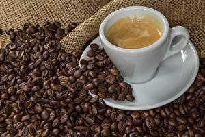 Fotos Kaffee Tasse Untertasse Getreide Lebensmittel