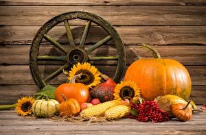 Images Pumpkin Vegetables Autumn Still-life Food