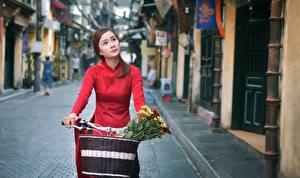 Picture Asian Bicycle Wicker basket Street female