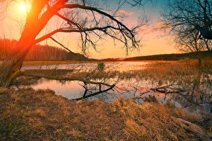 Fotos Herbst Sonnenaufgänge und Sonnenuntergänge Flusse Baumstamm Ast Natur