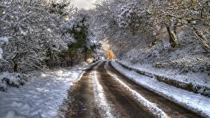 Hintergrundbilder Winter Straße Schnee Bäume HDR Ast Natur