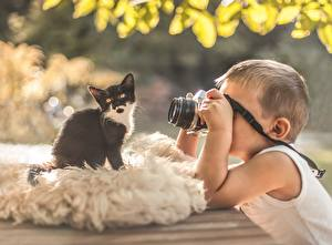 Pictures Cats Kittens Camera Photographer child Animals