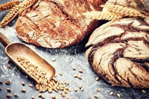 Hintergrundbilder Brot Weizen Ähre Lebensmittel