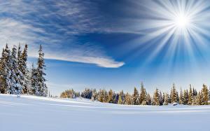 Hintergrundbilder Himmel Winter Sonne Schnee Lichtstrahl Natur