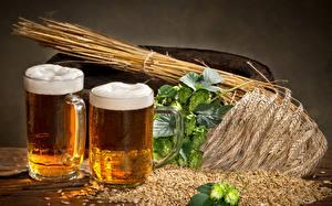 Bilder Bier Weizen Becher Zwei Ähre Getreide Schaum Humulus Lebensmittel