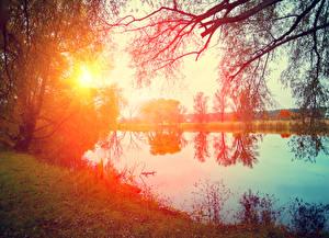 Hintergrundbilder Sonnenaufgänge und Sonnenuntergänge Flusse Bäume Sonne Ast Natur
