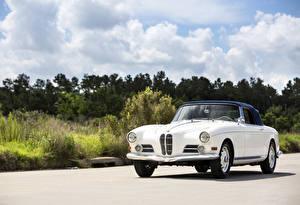 Photo BMW Retro White Metallic 1956-58 503 Cabriolet (Series I) automobile
