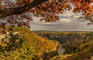 Hintergrundbilder Landschaftsfotografie Herbst Flusse Wälder Ast Natur