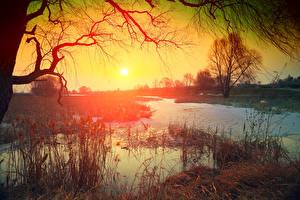 Hintergrundbilder Sonnenaufgänge und Sonnenuntergänge Flusse Sonne Ast Natur