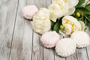Bilder Pfingstrosen Süßware Zefir Bretter Blumen