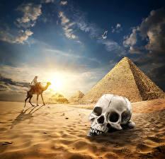 Fotos Ägypten Wüste Cranium Altweltkamele Himmel Sonnenaufgänge und Sonnenuntergänge Pyramide bauwerk Sand Cairo Natur