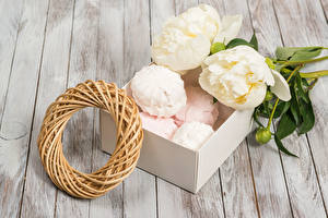 Fotos Pfingstrosen Süßigkeiten Zefir Schachtel Bretter Blumen